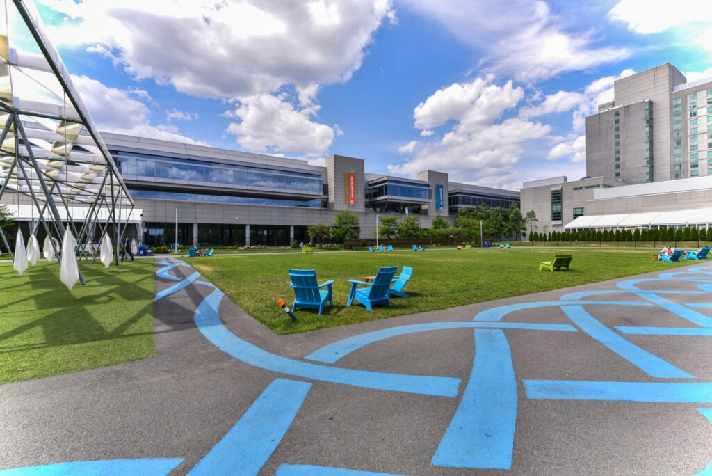 Blue walkways on The Lawn on D community field and recreation area with modern swings and ample green space for outdoor activities and pets